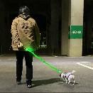 /【LED LITE UP LEASH】